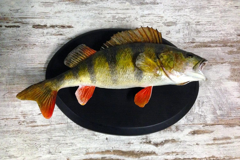 подарок рыбаку чучело рыбы